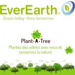 Plantez des arbres avec Everearth® et préservez la foret